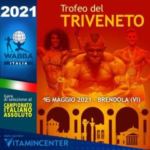 Locandina triveneto 2021